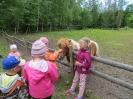 Saaremaa reis_19