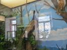 loodusmuuseum_8